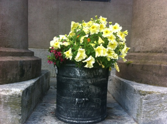 Flowers in an old milk churn at Cork's historic Butter Market, Shandon.