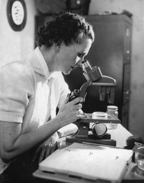 the fight against hazardous chemicals the rachel carson story Rachel carson carson, rachel carson's story called a battle in the clouds was printed in st nicholas that chemicals were necessary.